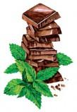 Сироп Proff Syrup Шоколад с мятой, 1 л